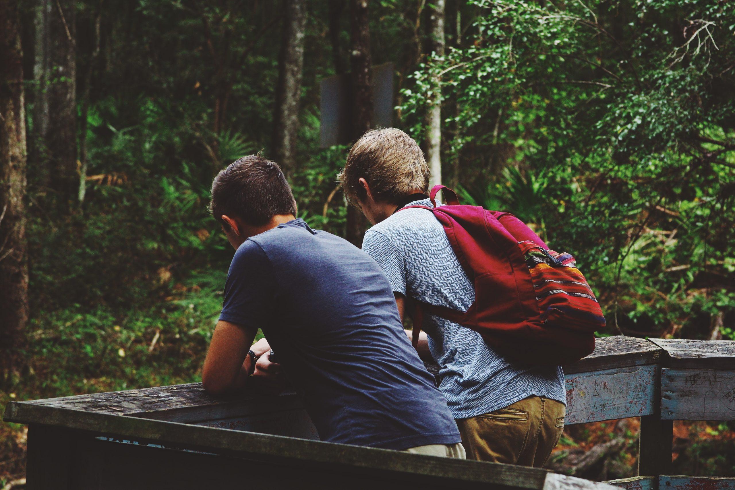 friendship, nature landscape, outdoor